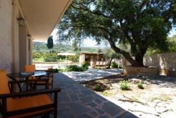 Территория. Греция, Каливес : Прекрасная вилла с бассейном и приватным двориком с барбекю, 2 гостиные, 4 спальни, 2 ванные комнаты, парковка, Wi-Fi