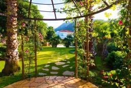 Территория. Греция, Сиси : Прекрасная вилла с бассейном и зеленым двориком с барбекю, 5 спален, 5 ванных комнат, парковка, Wi-Fi