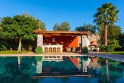 Бассейн. Греция, Сиси : Прекрасная вилла с бассейном и зеленым двориком с барбекю, 5 спален, 5 ванных комнат, парковка, Wi-Fi