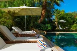 Зона отдыха у бассейна. Греция, Сиси : Прекрасная вилла с бассейном и зеленым двориком с барбекю, 5 спален, 5 ванных комнат, парковка, Wi-Fi