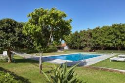 Бассейн. Греция, Ираклион : Прекрасная вилла с бассейном и зеленой лужайкой, 5 спален, 3 ванные комнаты, барбекю, парковка, Wi-Fi
