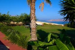 Территория. Греция, Ретимно : Прекрасная вилла с бассейном и джакузи, 3 спальни, 3 ванные комнаты, барбекю, площадка для детей, парковка, Wi-Fi
