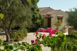 Фасад дома. Греция, Аделе : Шикарный комплекс из двух вилл с большим бассейном и зеленой территорией, 2 гостиные с кухнями, 6 спален, 3 ванные комнаты, барбекю, парковка, Wi-Fi