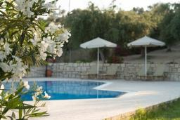 Бассейн. Греция, Аделе : Шикарный комплекс из двух вилл с большим бассейном и зеленой территорией, 2 гостиные с кухнями, 6 спален, 3 ванные комнаты, барбекю, парковка, Wi-Fi