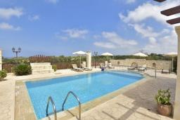 Бассейн. Греция, Скалета : Роскошная вилла с бассейном и зеленым двориком с барбекю, 4 спальни, 3 ванные комнаты, парковка, Wi-Fi