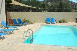 Бассейн. Греция, Коккино Хорио : Прекрасная вилла с бассейном в 50 метрах от моря, 3 спальни, 2 ванные комнаты, барбекю, парковка, Wi-Fi