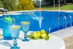 Бассейн. Греция,  Ханья : Шикарная вилла с бассейном и зеленой территорией, 2 гостиные, 6 спален, 5 ванных комнат, джакузи, барбекю, парковка, Wi-Fi