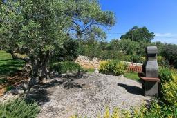 Территория. Греция, Ретимно : Шикарная вилла с большим бассейном и зеленым двориком с барбекю, 3 спальни, 2 ванные комнаты, парковка, Wi-Fi