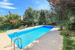 Бассейн. Греция, Агия Марина : Прекрасная вилла с бассейном и зеленым садом с барбекю, 3 спальни, 2 ванные комнаты, парковка, Wi-Fi