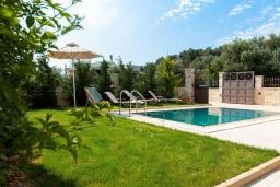 Бассейн. Греция, Аделе : Шикарная вилла с бассейном и зеленым двориком, 3 спальни, 2 ванные комнаты, барбекю, парковка, Wi-Fi