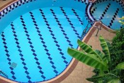 Бассейн. Греция, Аделе : Прекрасная вилла с бассейном и зеленым двориком, 3 спальни, 3 ванные комнаты, барбекю, джакузи, тренажерный зал, парковка, Wi-Fi