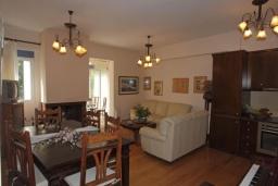 Гостиная. Греция, Аделе : Прекрасная вилла с бассейном и зеленым двориком, 3 спальни, 3 ванные комнаты, барбекю, джакузи, тренажерный зал, парковка, Wi-Fi