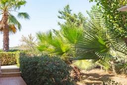 Территория. Греция,  Ханья : Прекрасная вилла с бассейном и зеленым двориком с барбекю, 4 спальни, 3 ванные комнаты, парковка, Wi-Fi