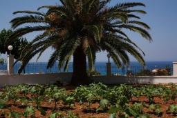 Территория. Греция, Фаласарна : Апартамент с гостиной, отдельной спальней и балконом с видом на море