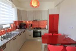 Кухня. Греция, Гувес : Роскошная вилла в 30 метрах от пляжа и с видом на море, 4 спальни, 3 ванные комнаты, тренажерный зал, зеленый дворик, парковка, Wi-Fi