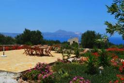 Территория. Греция, Коккино Хорио : Прекрасная вилла с бассейном и зеленой территорией, 3 спальни, 2 ванные комнаты, барбекю, парковка, Wi-Fi