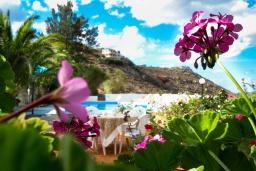 Территория. Греция, Каливес : Комфортабельная вилла с видом на море, с 3 спальнями, с бассейном и зелёным двориком