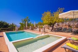 Бассейн. Греция,  Ханья : Роскошная вилла с панорамным видом на Ханью, с 5 спальнями,  бассейном и зелёной территорией, детской площадкой и барбекю