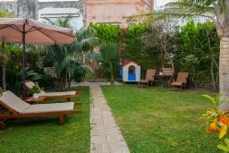 Территория. Греция,  Ханья : Комфортабельная вилла в окружение пышного сада, с 4 спальнями, патио, барбекю и джакузи, расположена прямо в центре Старого города Chania