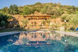 Бассейн. Греция, Скалета : Уютная вилла с 5 спальнями, бассейном, зелёным двориком с беседкой с патио и каменным барбекю, расположена в деревне Prinos