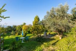 Территория. Греция, Ретимно : Прекрасная вилла с 3 спальнями, с бассейном, красивым садом, патио и каменным барбекю, расположена на окраине тихой деревни Prines