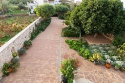 Территория. Греция, Скалета : Прекрасная вилла с зеленым двориком и барбекю, 4 спальни, 3 ванные комнаты, парковка, Wi-Fi