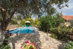 Бассейн. Греция, Каливес : Уютная вилла с бассейном и зеленым двориком с барбекю, 2 спальни, парковка, Wi-Fi