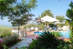Территория. Греция, Айя Марина : Прекрасная вилла с бассейном и зеленым двориком с барбекю, 3 спальни, 3 ванные комнаты, джакузи, парковка, Wi-Fi