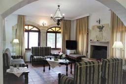 Гостиная. Греция, Айя Марина : Прекрасная вилла с бассейном и двориком с барбекю, 4 спальни, 3 ванные комнаты, парковка, Wi-Fi