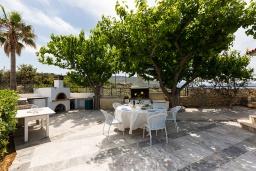 Территория. Греция, Ретимно : Шикарная вилла с большим бассейном, джакузи и видом на море, 7 спален, 5 ванных комнат, тренажерный зал, сауна, теннисный корт, бильярд, парковка, Wi-Fi