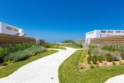 Территория. Греция, Ретимно : Комплекс из 4-х вилл в 50 метрах от пляжа, 4 бассейна, 4 гостиные, 9 спален, 6 ванных комнат, джакузи, детская площадка, приватный пляж, парковка, Wi-Fi