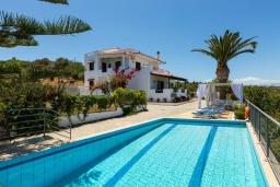 Бассейн. Греция, Аделе : Уютная вилла с бассейном и двориком с барбекю, 6 спален, 2 ванные комнаты, парковка, Wi-Fi