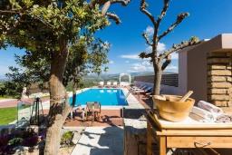 Бассейн. Греция, Коккини Хани : Роскошная вилла с бассейном, зеленной территорией и барбекю, 5 спален, 4 ванные комнаты, парковка, Wi-Fi