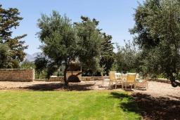Территория. Греция, Панормо : Прекрасная вилла с бассейном, зеленой лужайкой и барбекю, 4 спальни, 4 ванные комнаты, парковка, Wi-Fi