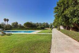 Территория. Греция, Ираклион : Прекрасная вилла с бассейном и зеленой лужайкой, 5 спален, 3 ванные комнаты, барбекю, парковка, Wi-Fi
