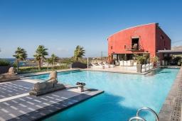 Фасад дома. Греция, Ханья : Роскошная вилла с бассейном и зеленой территорией, 6 спален, 4 ванные комнаты, барбекю, парковка, Wi-Fi