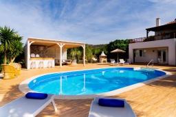 Бассейн. Греция, Сиси : Прекрасная вилла с бассейном и зеленым двориком с барбекю, 2 спальни, 2 ванные комнаты, парковка, Wi-Fi