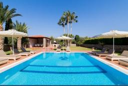 Бассейн. Греция, Сиси : Роскошная вилла с бассейном и зеленым двориком с барбекю, 5 спален, 4 ванные комнаты, парковка, Wi-Fi