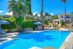 Бассейн. Греция, Карниарис : Роскошная вилла с большим бассейном и зеленым двориком с барбекю, 3 спальни, 3 ванные комнаты, парковка, Wi-Fi