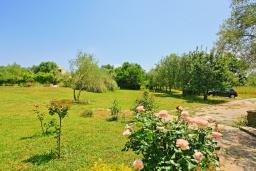 Территория. Греция, Поуладес : Уютная вилла с бассейном и зеленым двориком с барбекю, 4 спальни, 3 ванные комнаты, парковка, Wi-Fi