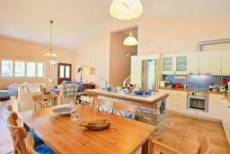 Кухня. Греция, Поуладес : Уютная вилла с бассейном и зеленым двориком с барбекю, 4 спальни, 3 ванные комнаты, парковка, Wi-Fi