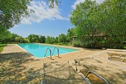 Бассейн. Греция, Поуладес : Уютная вилла с бассейном и зеленым двориком с барбекю, 4 спальни, 3 ванные комнаты, парковка, Wi-Fi