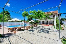 Территория. Греция, Агнос : Роскошная вилла с большим бассейном и двориком с барбекю, 4 спальни, 3 ванные комнаты, парковка, Wi-Fi
