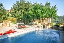 Бассейн. Греция, Ираклион : Прекрасная вилла с бассейном и зеленой территорией, 9 спален, 9 ванных комнат, парковка, Wi-Fi