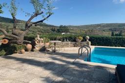 Территория. Греция, Ираклион : Прекрасная вилла с бассейном и зеленой территорией, 9 спален, 9 ванных комнат, парковка, Wi-Fi