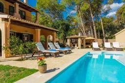 Бассейн. Греция, Керкира : Роскошная вилла в 90 метрах от пляжа с бассейном и зеленым двориком с барбекю, 4 спальни, 3 ванные комнаты, парковка, Wi-Fi