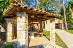 Территория. Греция, Керкира : Роскошная вилла в 90 метрах от пляжа с бассейном и зеленым двориком с барбекю, 4 спальни, 3 ванные комнаты, парковка, Wi-Fi