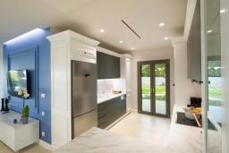 Кухня. Греция, Дассия : Роскошная вилла с зеленой территорией, бассейном и барбекю, 5 спален, 5 ванных комнат, джакузи, парковка, Wi-Fi