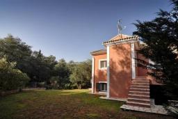 Фасад дома. Греция, Палеокастрица : Уютная вилла с зеленым двориком, 3 спальни, 3 ванные комнаты, парковка, Wi-Fi
