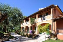 Фасад дома. Греция, Дассия : Прекрасная вилла с бассейном и зеленой территорией, 4 спальни, 3 ванные комнаты, барбекю, парковка, Wi-Fi